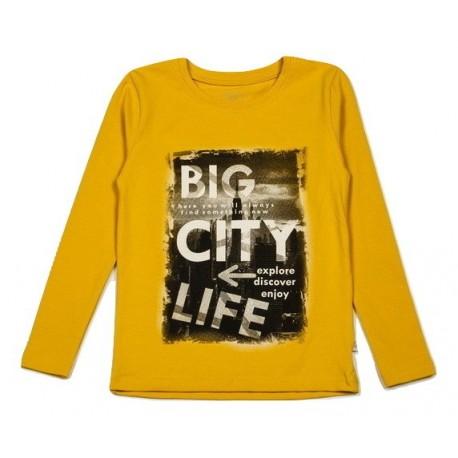 """FLAMINGO marškinėliai ilgomis rankovėmis berniukui """"Big City Life"""""""